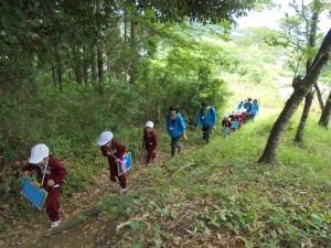裏山探検2組 (1)